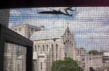 a praying mantis crawling at my window