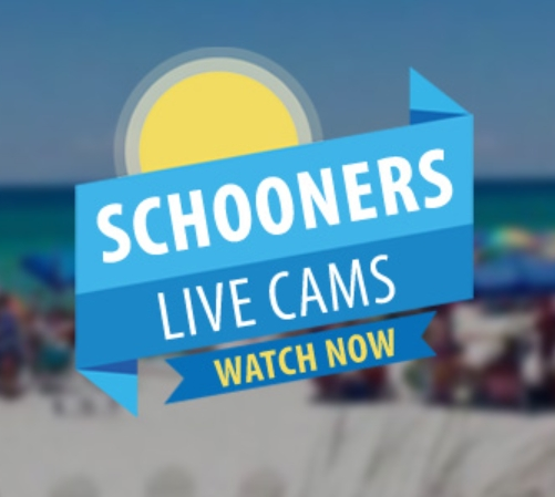 video streams from Schooners in Panama City Beach : Schooners Live Cams