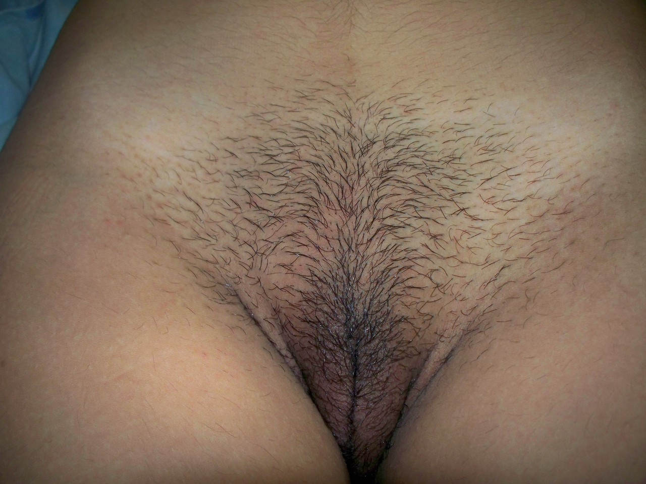 Hair Of The Pussy 85
