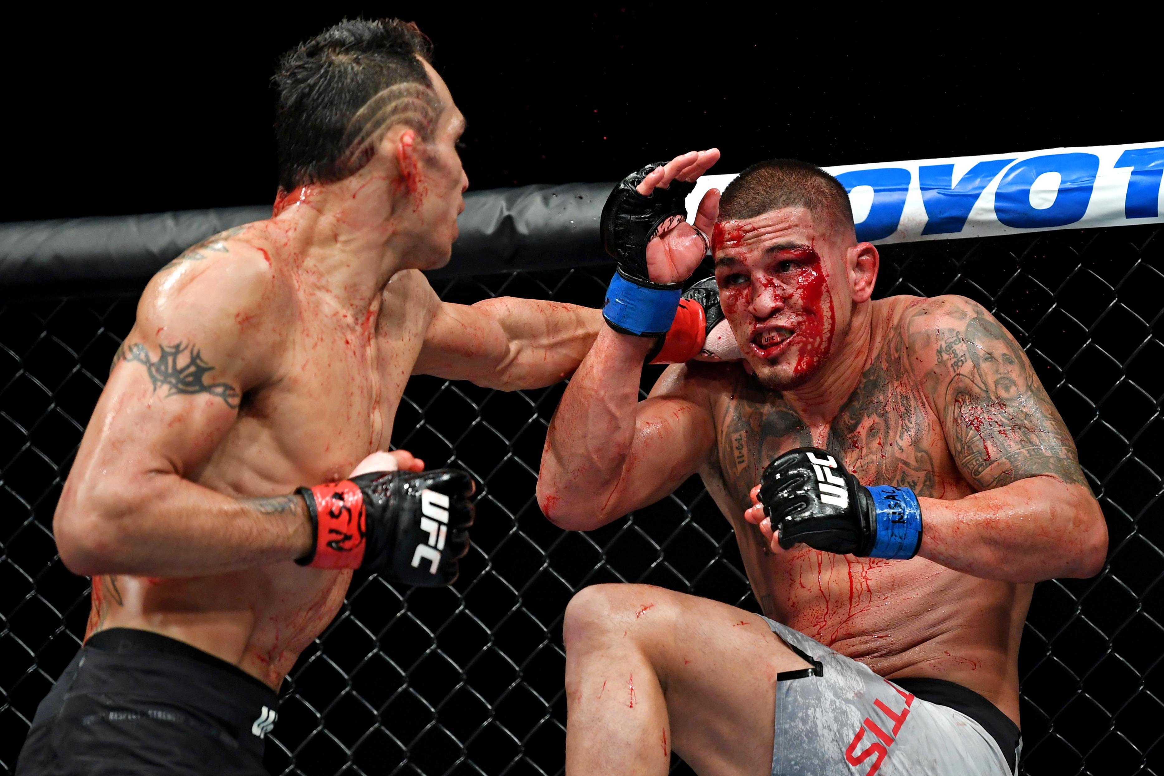 video review : Tony Ferguson versus Anthony Pettis at UFC 229
