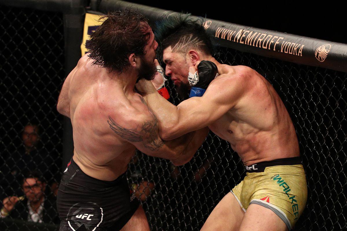 video review : Johnny Walker versus Nikita Krylov at UFC Fight Night